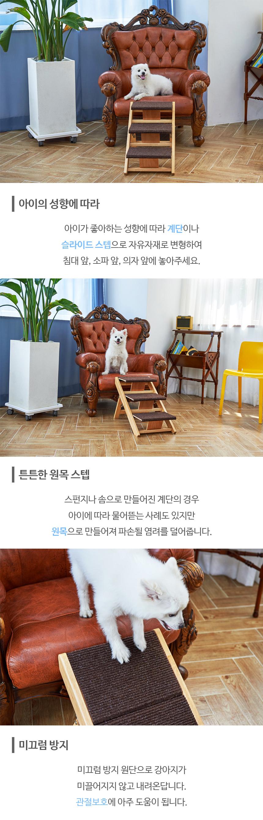 상세정보3